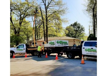 Springfield tree service 4 Seasons Tree Service