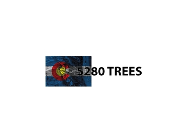 Lakewood tree service 5280 Trees