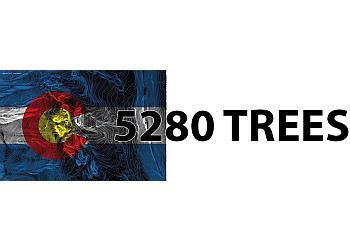 Lakewood tree service 5280 Trees