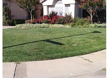 Elk Grove lawn care service 5 Star Gardening