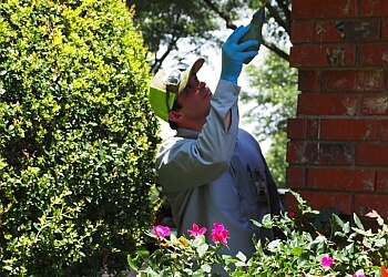 3 Best Pest Control Companies In Waco Tx Expert Recommendations