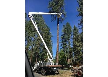 Spokane tree service A1 Tree Service LLC