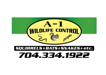 Charlotte animal removal A-1 Wildlife Control