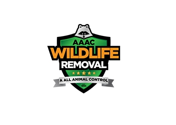 Columbus animal removal AAAC Wildlife Removal