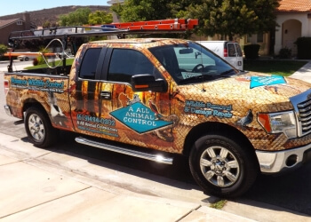 San Diego animal removal AAAC Wildlife Removal