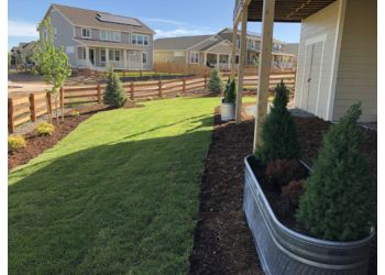 Aurora landscaping company AAA Landscaping Ltd.