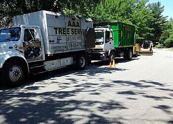 New York tree service AAA Tree Service NY Corp