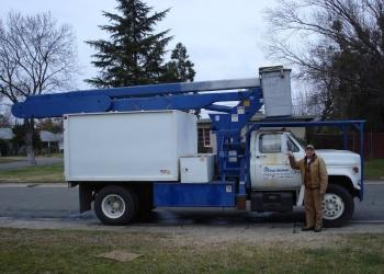 Sacramento tree service A Better Tree Service