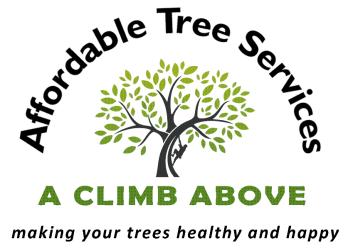 Aurora tree service A Climb Above Tree Service