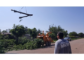 Abilene tree service A Cutt Above Tree Service