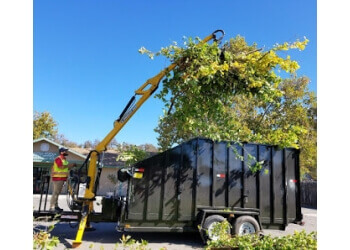 Bakersfield tree service ADVANCED TREE CARE