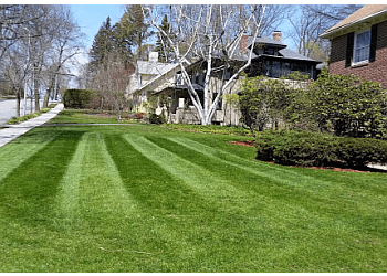 Worcester lawn care service A & J Property Care