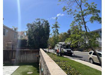 Pomona tree service A & J Tree Service