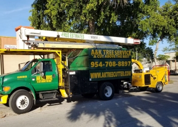 Fort Lauderdale tree service A&K Tree Service and More