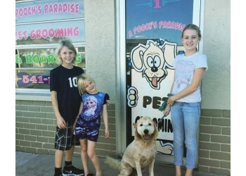 Cape Coral pet grooming A Pooch's Paradise Pet Groom