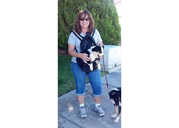 Las Vegas dog walker A PurrFurred Pet Care Service