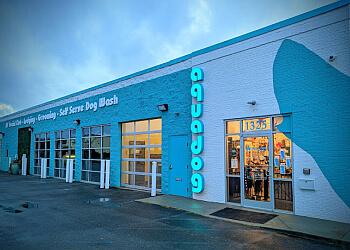 Chattanooga pet grooming AQUA DOG GROOMING ETC