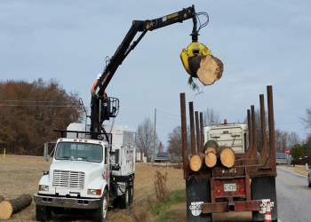 Raleigh tree service A+ Tree & Crane Services, Inc.