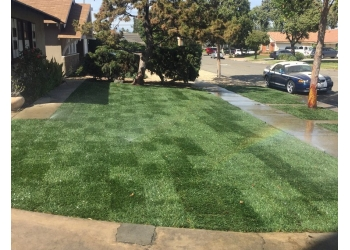 Orange lawn care service AVS Landscape Maintenance