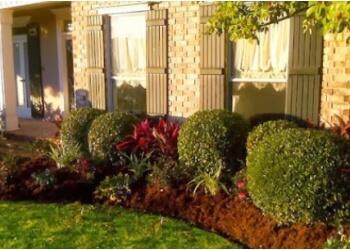 New Orleans lawn care service Absolute Lawn Care LA LLC