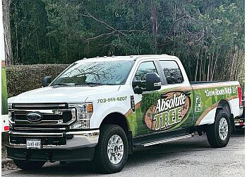 Alexandria tree service Absolute Tree Inc.
