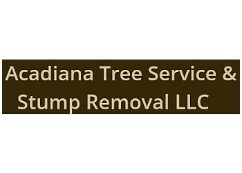 Lafayette tree service Acadiana Tree Service and Stump Removal LLC