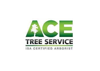 Birmingham tree service Ace Tree Service