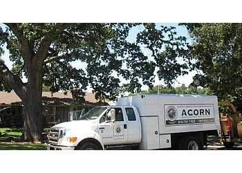 Roseville tree service Acorn Arboricultural Services, Inc.