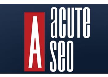 North Las Vegas web designer Acute SEO