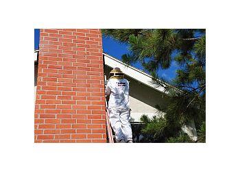 3 Best Pest Control Companies In Chula Vista Ca Expert
