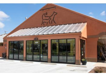 Fort Collins veterinary clinic Advanced Animal Care of Colorado