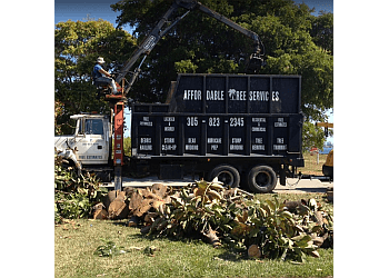 Pembroke Pines tree service Affordable Tree Service, Inc.