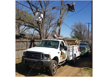Lubbock tree service Affordable Tree & Stump Removal