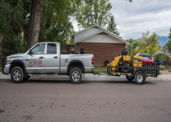 Colorado Springs tree service Affordable Tree and Shrub Experts