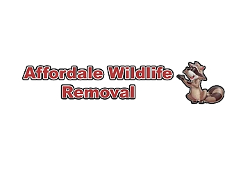 Indianapolis animal removal Affordable Wildlife Removal