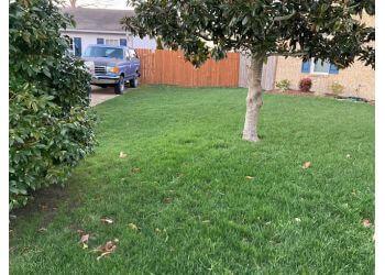 Chesapeake lawn care service Agronomic Lawn Management