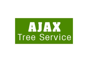 Chicago tree service Ajax Tree Service