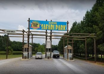 Montgomery places to see  Alabama Safari Park