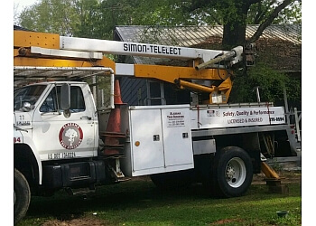 Mobile tree service Alabama Tree Surgeons