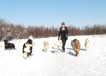Anchorage dog walker Alaska Dogs Unleashed
