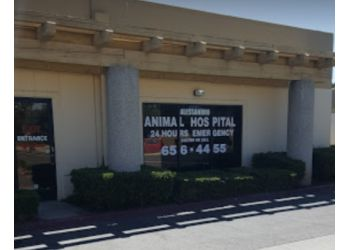 Moreno Valley veterinary clinic  Alessandro Animal Hospital