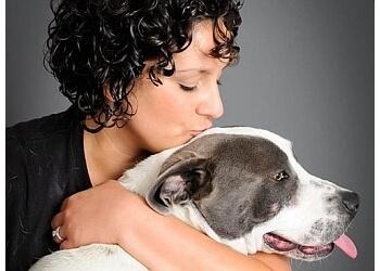 Long Beach dog training Alex Macias Dog Training