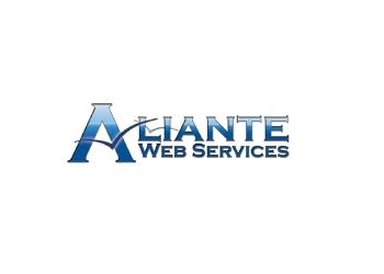North Las Vegas web designer ALIANTE WEB SERVICES