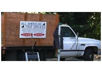 Kent tree service All American Tree Service