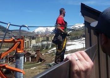 Denver animal removal All American Wildlife, LLC