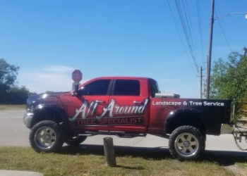 Cape Coral tree service All Around Tree Specialists