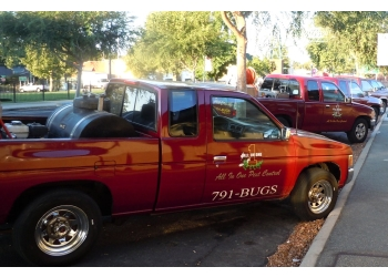 Roseville pest control company All In One Pest Control