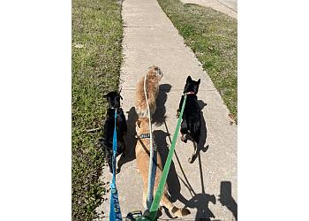Garland dog walker All Paws FurEver