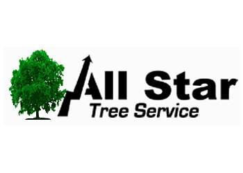 Huntsville tree service All Star Tree Service