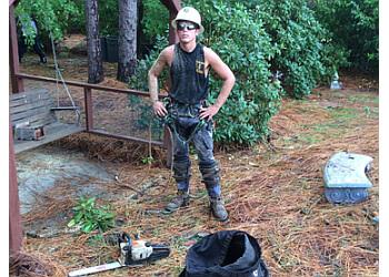 Fayetteville tree service Allen Tree Service